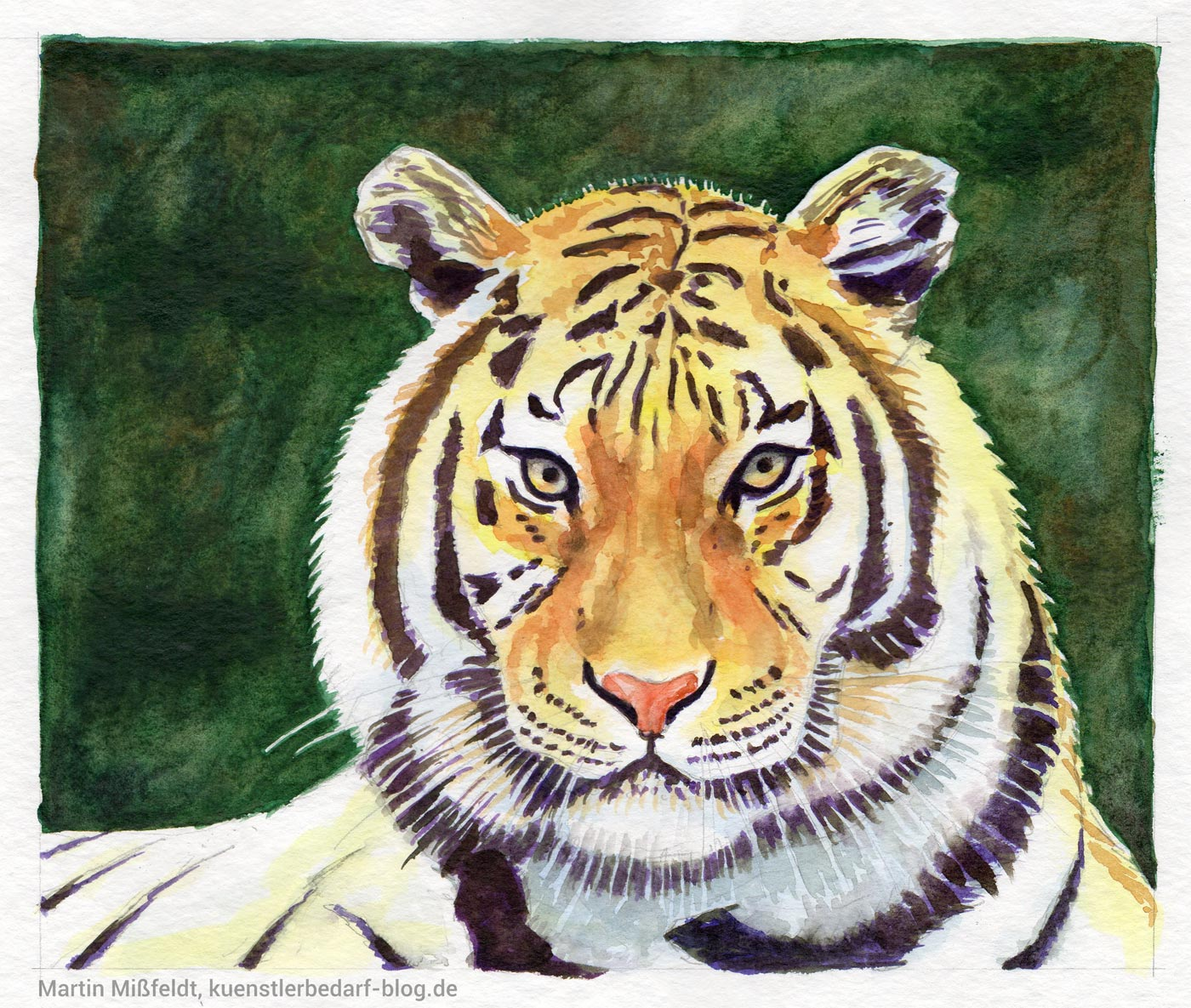 aquarell tutorial f r anf nger tiger. Black Bedroom Furniture Sets. Home Design Ideas