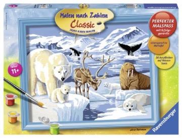 Malen Nach Zahlen Tiere Der Arktis Eisbär 3024 Cm