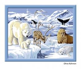 Ravensburger 28422 - Tiere der Arktis - Malen nach Zahlen, 30 x 24 cm -